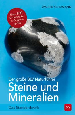 Buch Steine und Mineralien