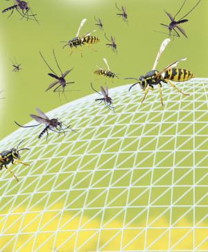 Ersatztabletten für Insektenschutz Pest Reject Bug Shield