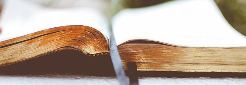 Fachwissen & Literatur